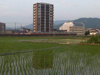 夕歩タイム (2).JPG