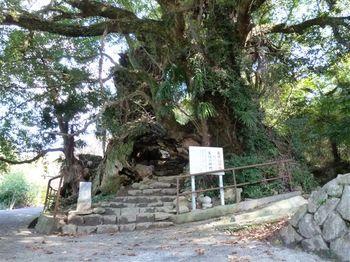 生樹の御門1.jpg