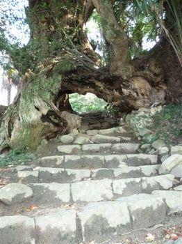 生樹の御門3.jpg