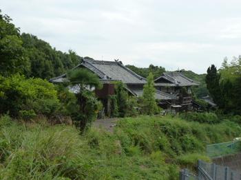 菅兵 (2).JPG