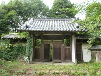 菅兵 (3).JPG