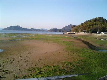 野々江干潟.JPG