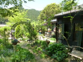 お庭 (4).JPG