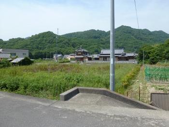 大通寺西 (2).jpg