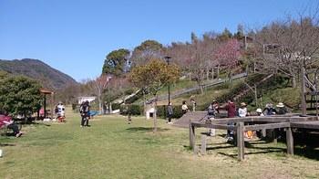安神山公園ワクワクパ-クh2803 (3).jpg