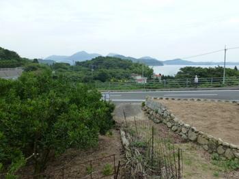 瀬戸の売土地 (1).JPG