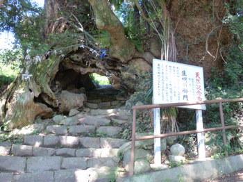 生樹の御門.JPG