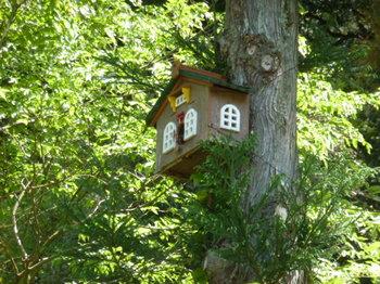 鳥の家 (2).JPG